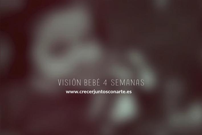 VISIONBEBE4SEMANAS25