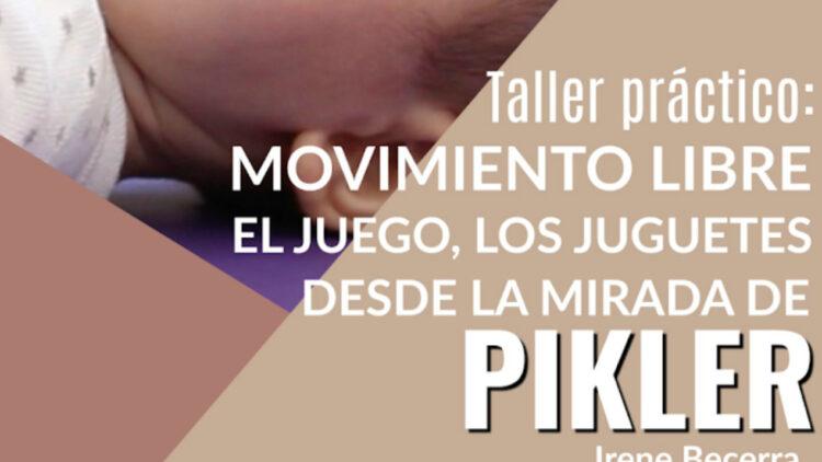 Taller práctico Pikler. Feb 2020